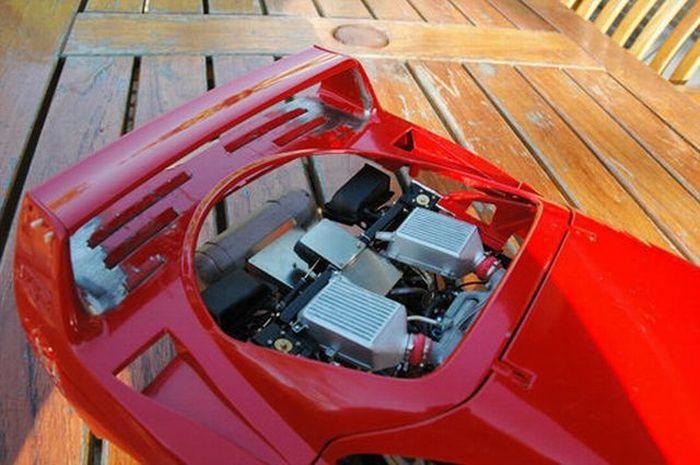 Great Ferrari  Model (45 pics)