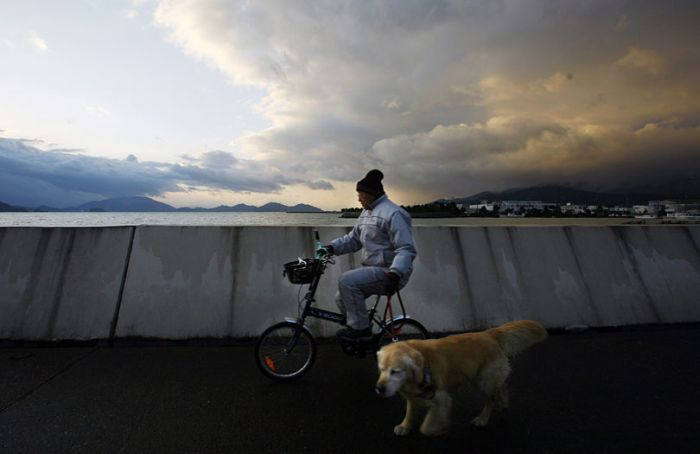 Bikes around the world (22 pics)