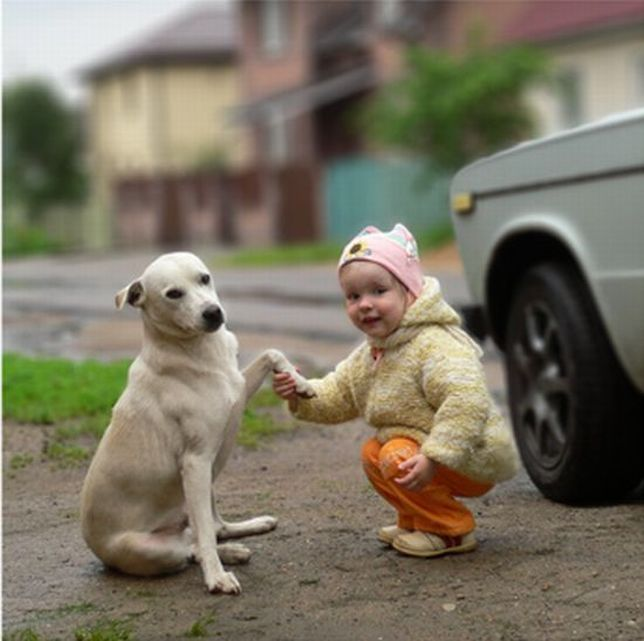 Best friends forever (4 pics)
