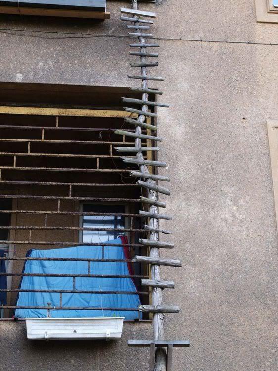 Cat ladders (8 pics)