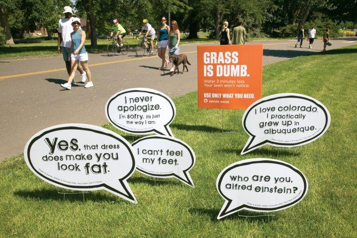 Grass is dump (4 pics)
