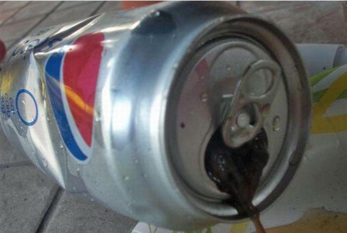 WTF Pepsi Can (9 pics)