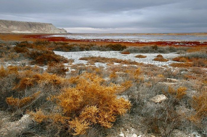 Aral Sea. The Dead One (17 pics)
