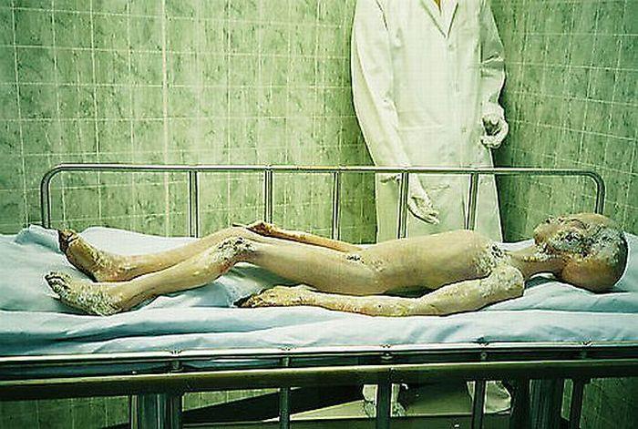 Dead Aliens (14 pics)