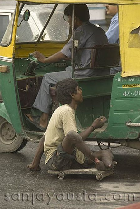 Crippled beggars of India (17 pics)