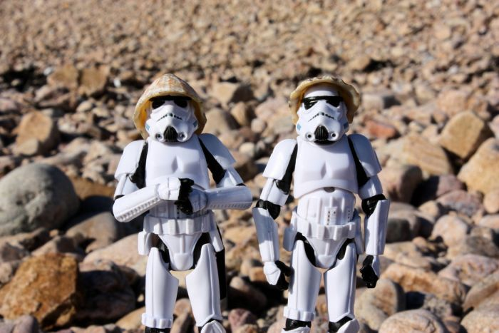 Startroopers in real life  (23 pics)