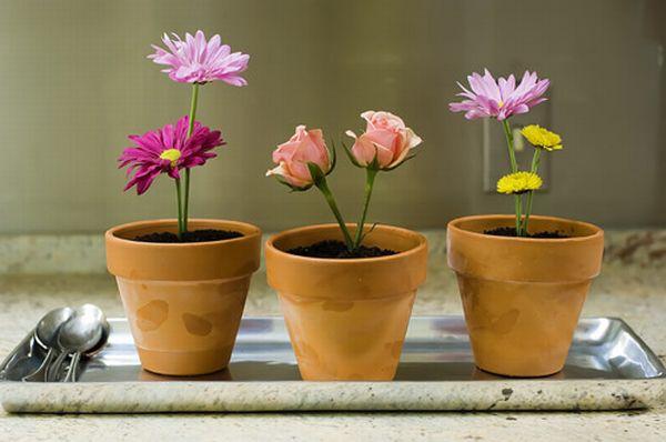 Springy Flower Pot Desserts (40 pics)