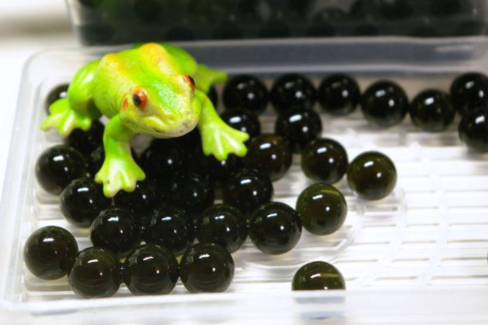 Unusual black caviar (5 pics)