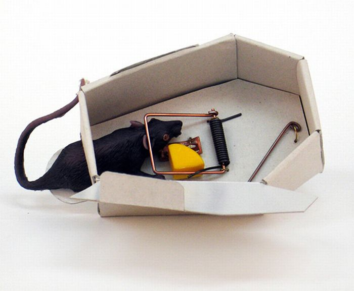 Coffin shaped mousetrap (4 pics)