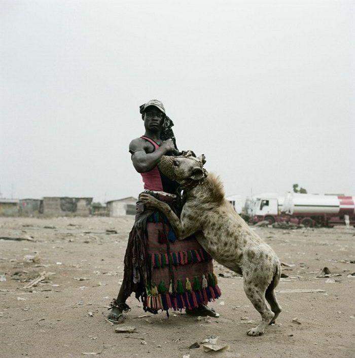 African Pets (14 pics)