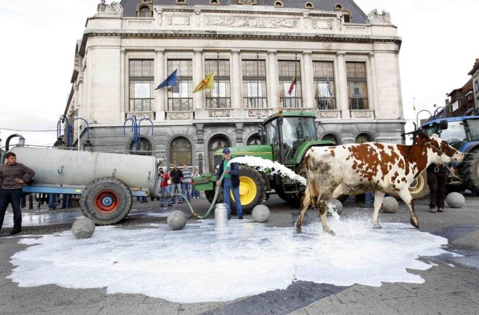 Milk strike in Belgium (6 pics)