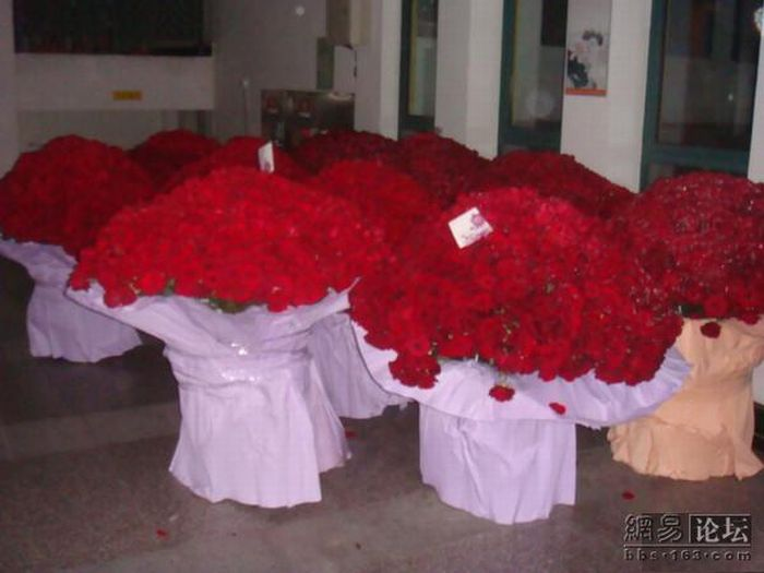 10 thousand roses (8 pics)