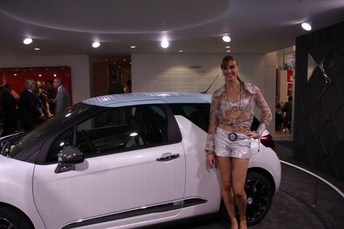 Girls of Frankfurt Auto Show (25 pics)