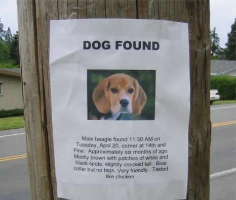 The Best of Lost And Found Signs (25 pics)