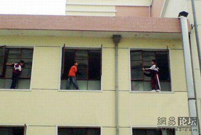 Washing the windows (6 pics)