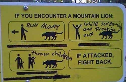 Image result for funny modified signs
