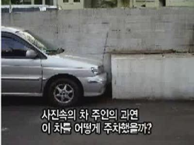 Great Parking Skills