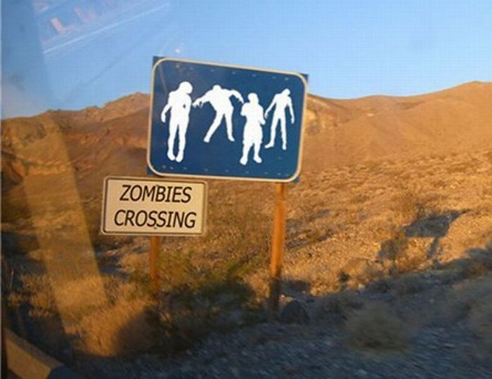 Beware Of Zombies (37 pics)