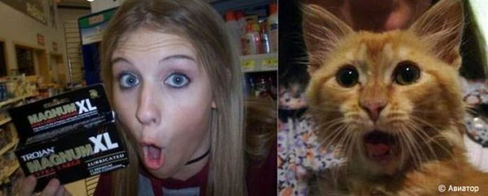 Funny. Humans And Animals (9 pics)