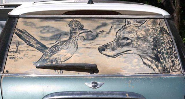 Impressive Drawings In The Dust On Cars (69 pics)