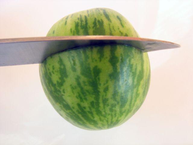 Tiny Watermelon (3 pics)
