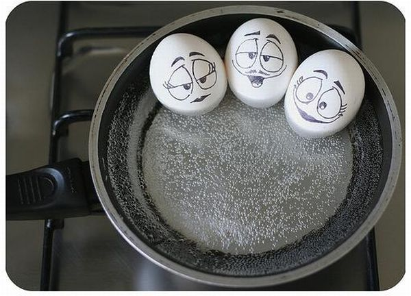 The Secret Life Of Eggs (7 pics)