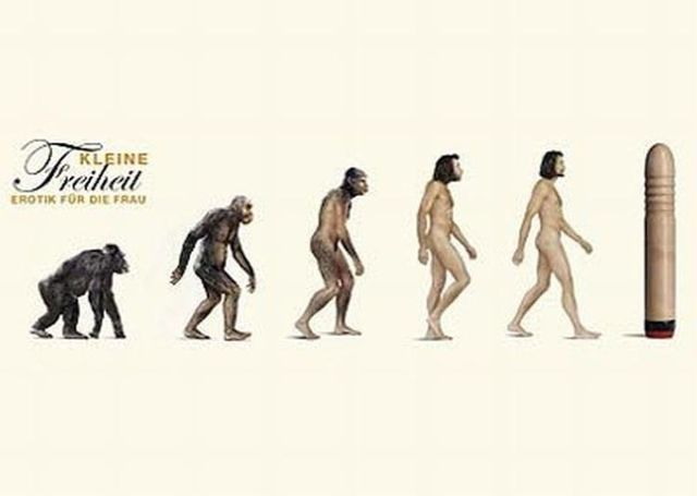 Different Types Of Evolution (54 pics)