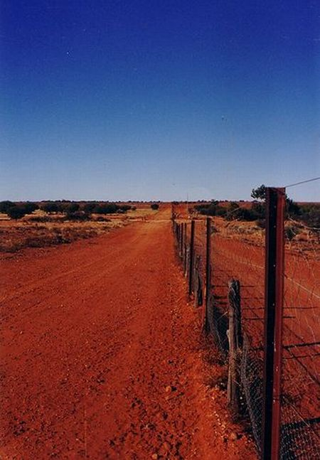 Australian Dingo Fence (12 pics)