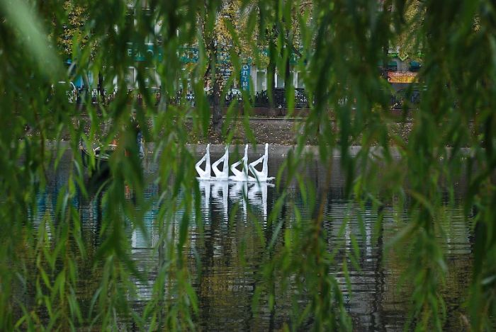 Installations by Mark Jenkins in Moscow (29 pics)