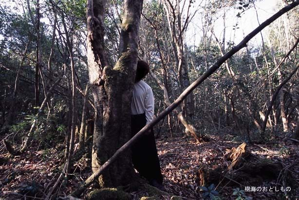 Police Car Website >> Aokigahara Forest - One Of The Creepiest Places On Earth (19 pics)