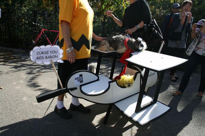 Halloween Dog Parade 2009 (43 pics)