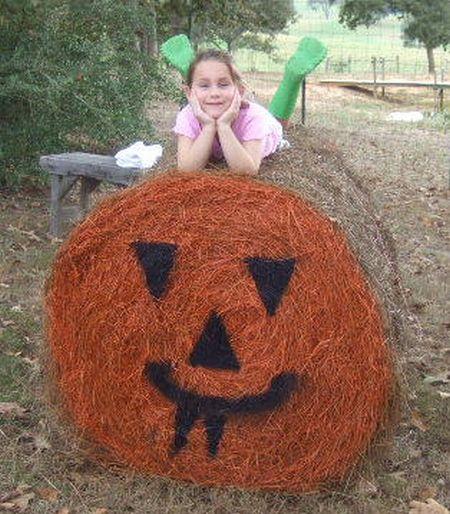 When Farm Kids Get Bored (27 pics)