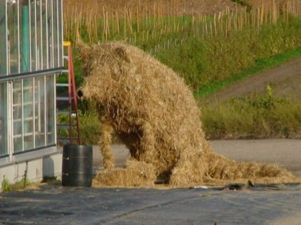 When Farm Kids Get Bored (27 pics)