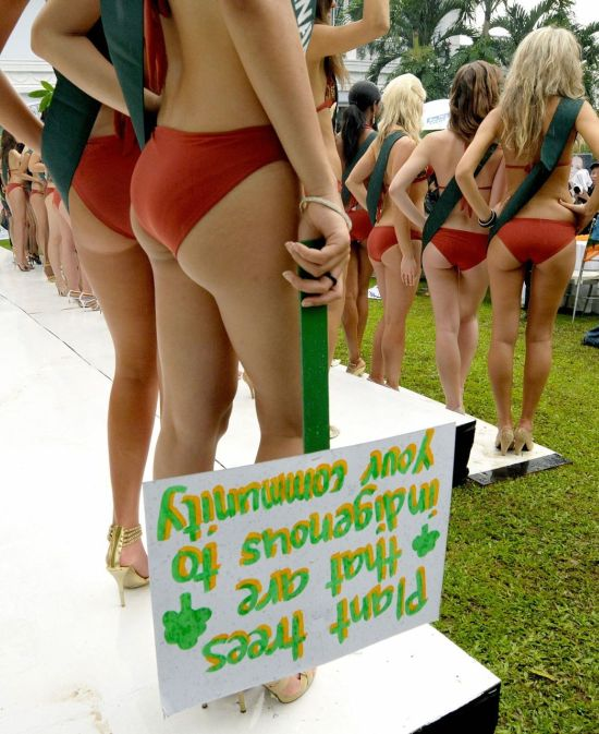 Miss Earth Contestants in Some Sexy Protest (15 pics)