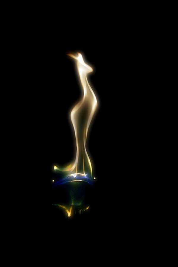 Amazing Fire Art (13 pics)