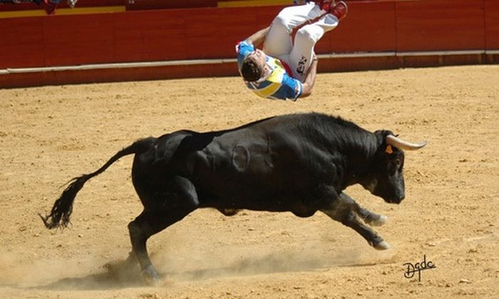 Recortadores Making Corrida Fun Without Killing the Bulls (36 pics)