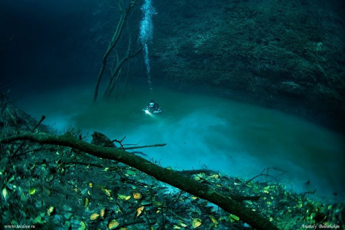 Underwater River in Mexico (4 pics + video)