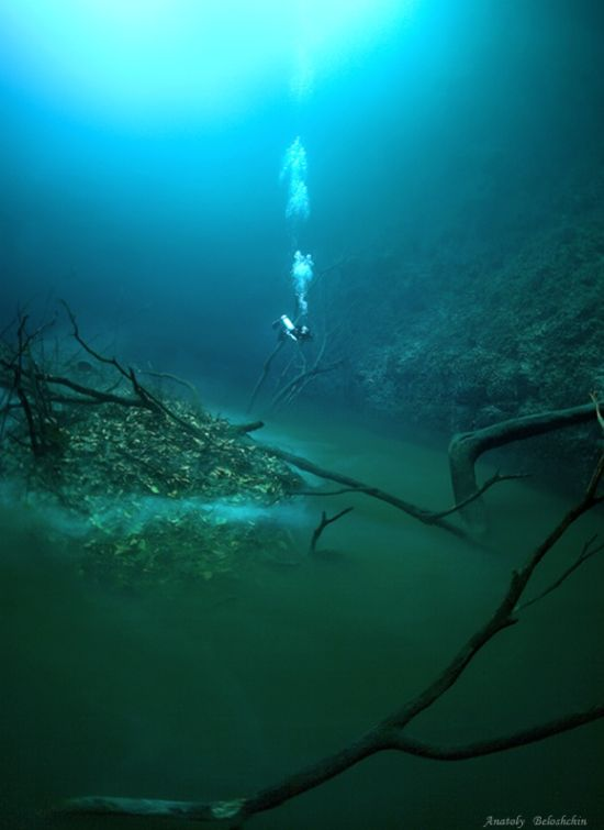 Cenote Angelita (Hermoso)