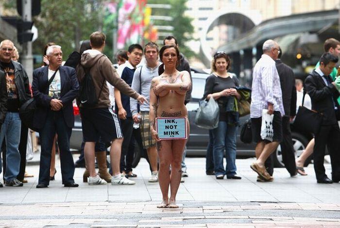 Sexy Peta Protest (9 pics)