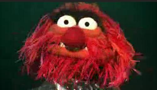 The Muppets. Bohemian Rhapsody