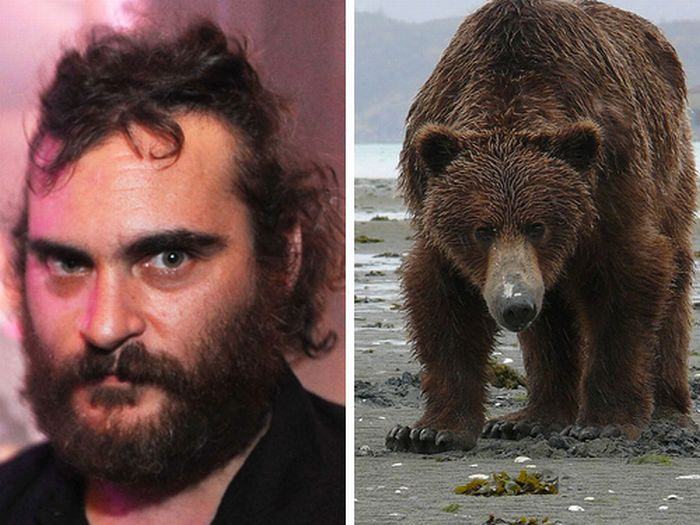 Celebs That Look Like Animals (22 pics)