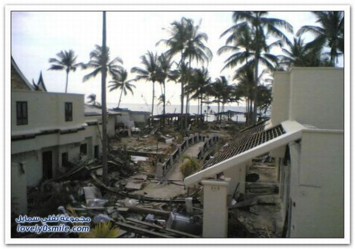 Before and After Tsunami Pictures (29 pics)