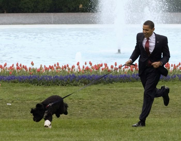 The Best Photos of 2009 According to Reuters (46 pics)