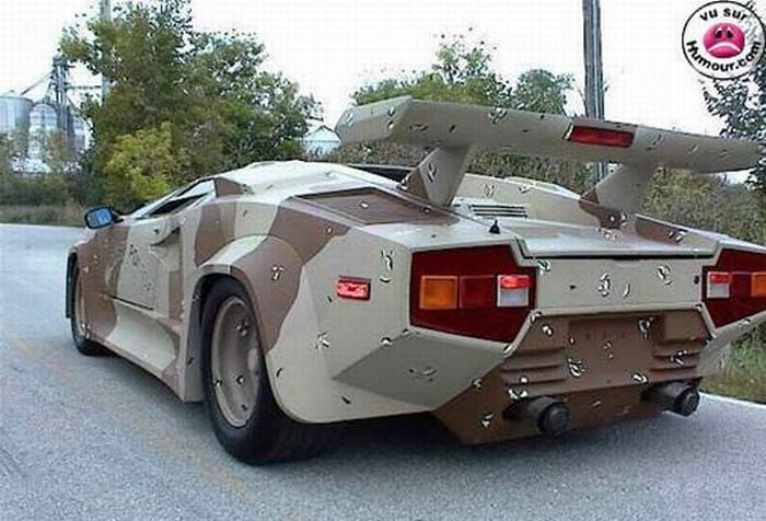 Camouflage Cars (13 pics)