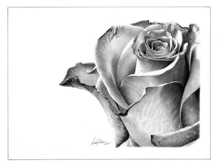 Amazing Pencil Art (46 pics)