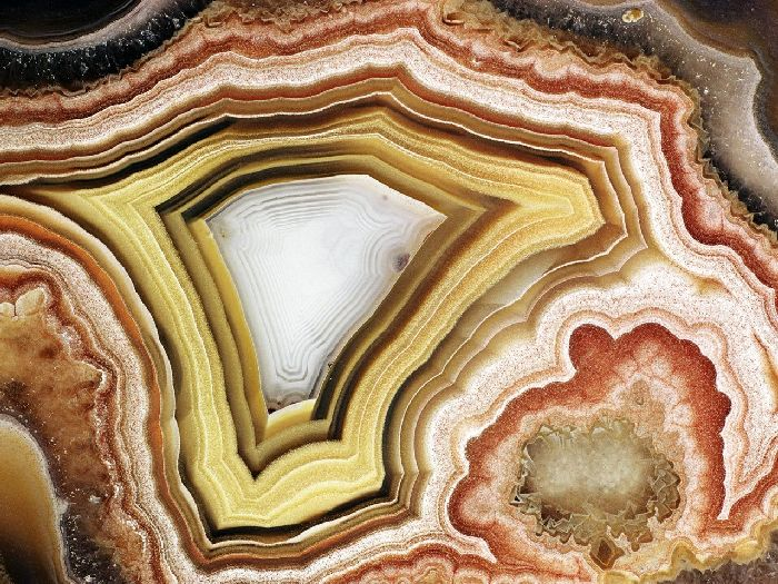 Patterns in Nature (147 pics)