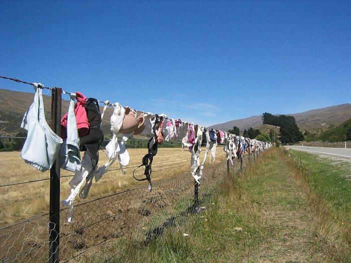 Unusual fence (9 pics)