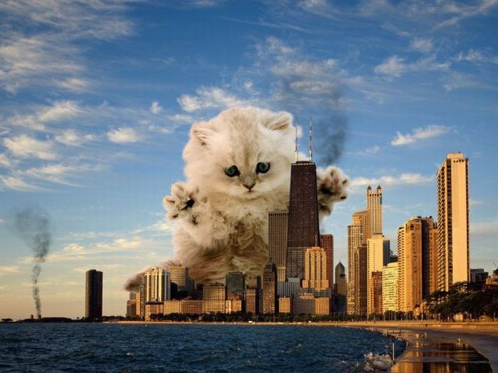 Cool Photoshopped Pictures (20 pics)