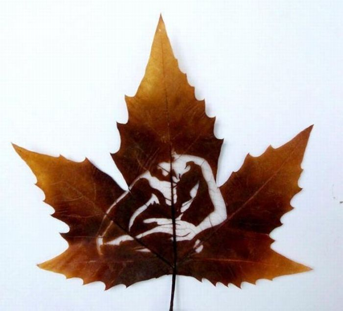 Pictures on leaves (15 pics)