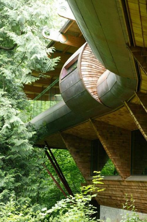 The Coolest Tree House I Have Ever Seen (15 pics)